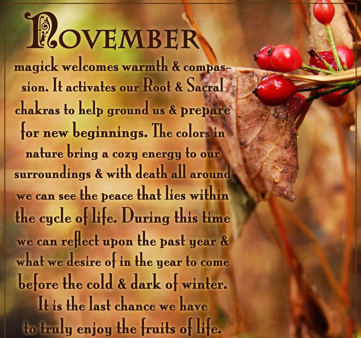 The Magic of November